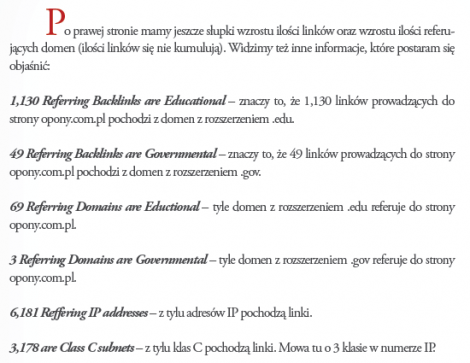 Analiza SEO - Fragment darmowego e-booka